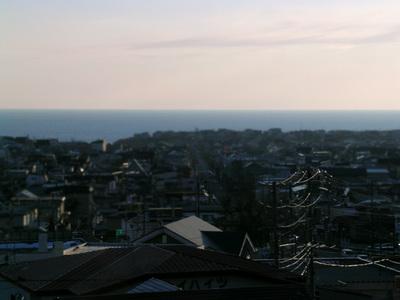 Pic_2008_02_20